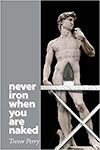 Never Iron When You're Naked by Trevor Perry